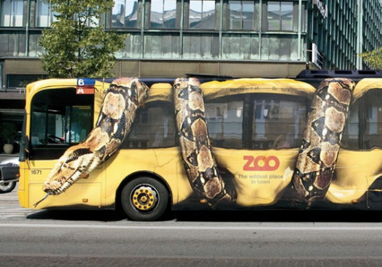 sfwpexperts.com-guerrilla-marketing-Zoo-Bus