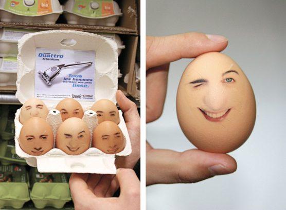 sfwpexperts.com-sticker-marketing-Wilkinson-eggs-man-face