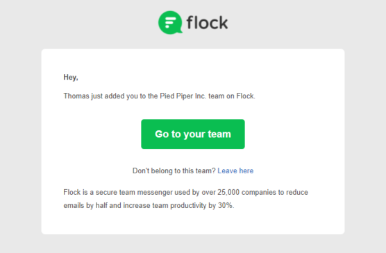 sfwpexperts.com-flock-email-marketing-campaign-examples
