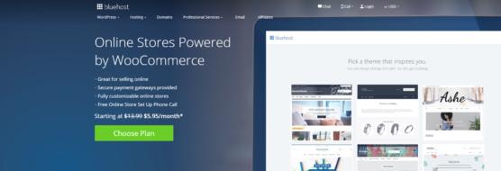 sfwpexperts.com-woocommerce-hosting-Bluehost