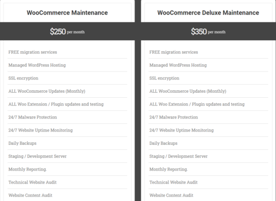 sfwpexperts.com-woocommerce-wordpress-websit-Maintenance