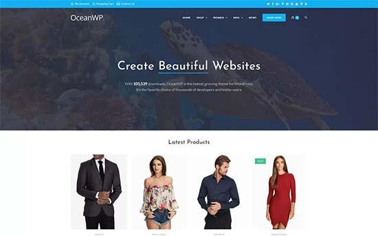 sfwpexperts.com-woocommerce-wordpress-oceanwp