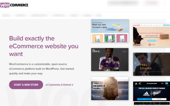 sfwpexperts.com-best-ecommerce-platform-2020-woocommerce