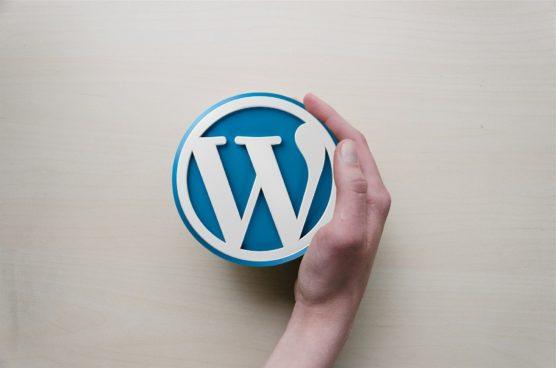 sfwpexperts.com-wordpress-website-redesign-wordpress