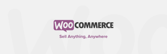 sfwpexperts.com-woocommerce-product-page-customization