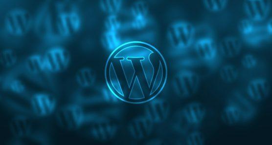 sfwpexperts.com-wordpress-website-design-CMS