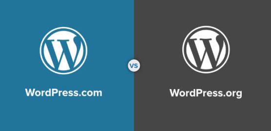 sfwpexperts.com-wordpress-website-design-wordpress.com-vs-wordpress.org-comparison