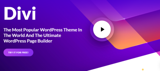 sfwpexperts.com-best-wordpress-theme-to-use-in-2020-Divi