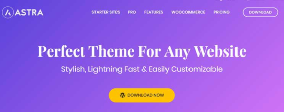 sfwpexperts.com-10-Best-Wordpress-Themes-To-Use-In1-2021-Astra