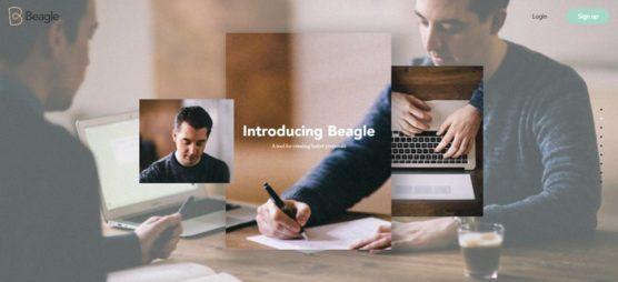 sfwpexperts.com-Award-Winning-Best-website-designs-Beagle