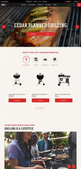 sfwpexperts.com-Award-Winning-Best-website-designs-weber