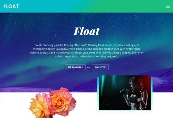 sfwpexperts.com-Best-Responsive-WordPress-float