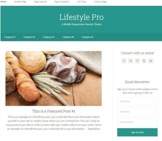 sfwpexperts.com-Best-Responsive-WordPress-lifestyle-pro