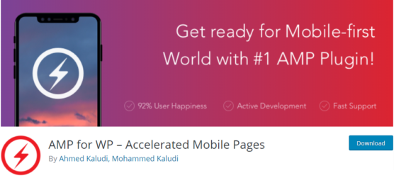 sfwpexperts.com-Best-WordPress-AMP-for-WP