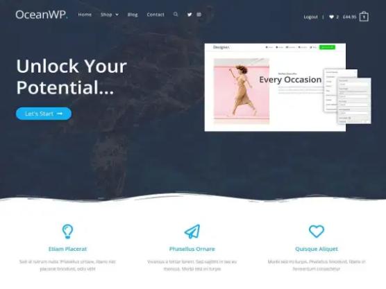 sfwpexperts.com-Best-WordPress-Ecommerce-Theme-OceanWP