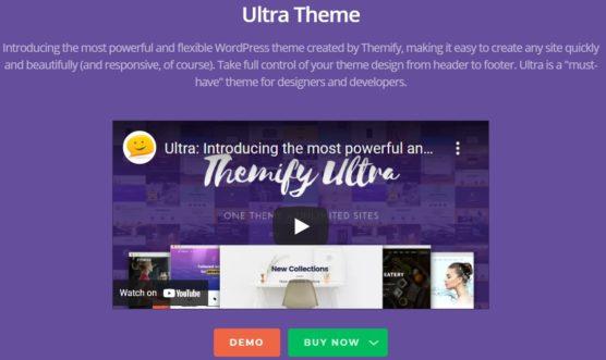sfwpexperts.com-Best-Membership-WordPress-Theme-Ultra