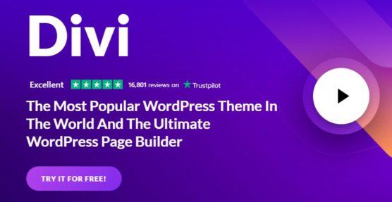 sfwpexperts.com-10-Best-WordPress-Transportation-And-Logistic-Theme-divi
