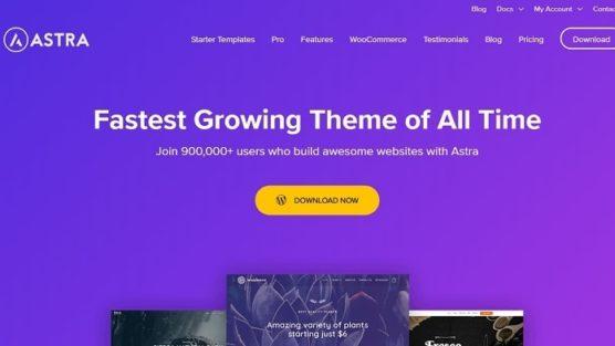 sfwpexperts.com-Best-WordPress-affiliate-marketing-theme-Astra