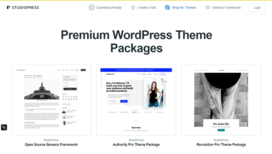sfwpexperts.com-Best-Wordpress-Theme-Marketplace-To-Consider-In-2021