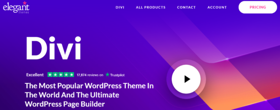 sfwpexperts.com-Best-Wordpress-Theme-Marketplace-To-Consider-In-2021-Divi